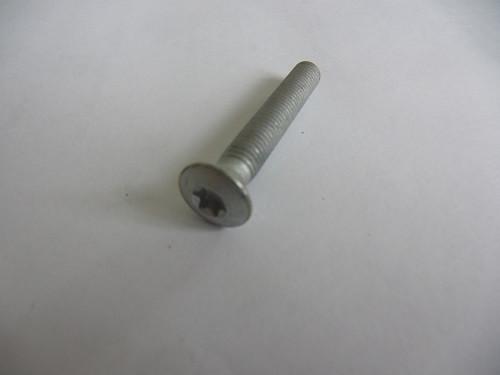 Schraube für Türscharnier M8x55