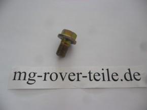Schraube für Bremssattelträger vorn